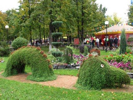 Садовые и парковые скульптуры из растений
