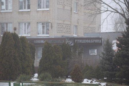 Новомышастовская птицефабрика