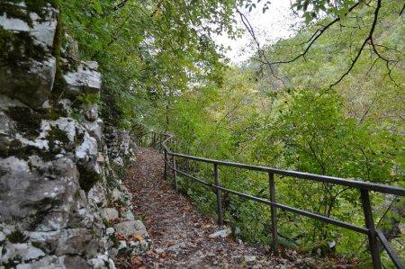 Дорога к Агурским водопадам
