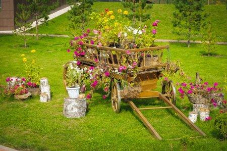 Клумба с цветами в домашнем саду