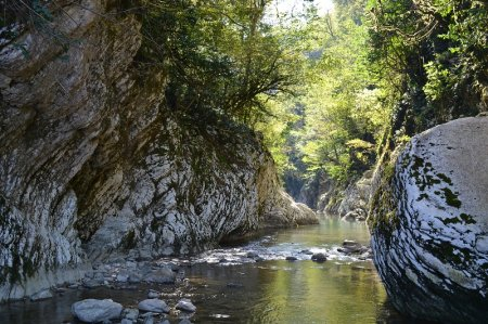 Река Хоста в Сочи