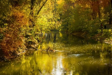 Осенняя речка в Туапсе