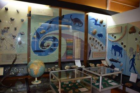 Зал археологии