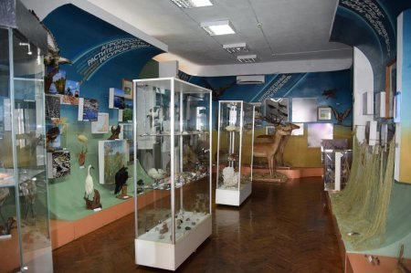 Павильон музея