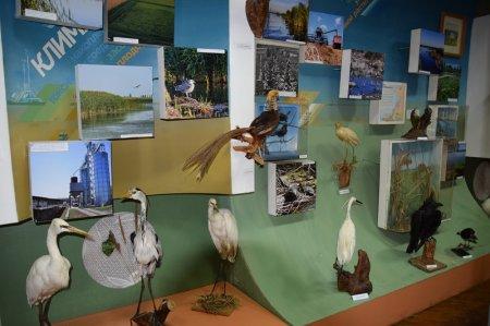 Павильон птиц
